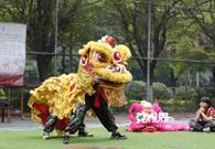 Dongguan LIVE 2018 Spring Festival Edition Episode 4: Lion Dance